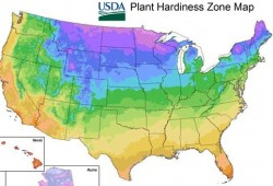 Pic: 2012 USDA Plant Hardiness Zone